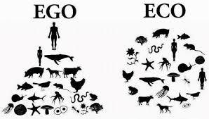 Ökologie vs. Egoismus